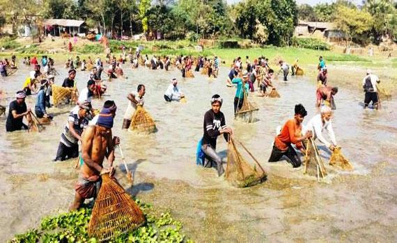 লালপুরে পদ্মা নদীতে মাছ ধরার উৎসব