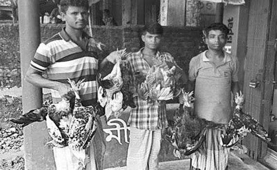 হাঁস-মুরগি উল্টো করে বেঁধে নিয়ে যাওয়া দণ্ডনীয় অপরাধ