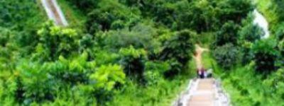 ঘুরে আসতে পারেন 'মধুটিলা ইকোপার্ক'।