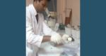 তালের শাঁস-ওলকচু ব্যবহার করে ডায়াবেটিস নিয়ন্ত্রণে সাফল্য
